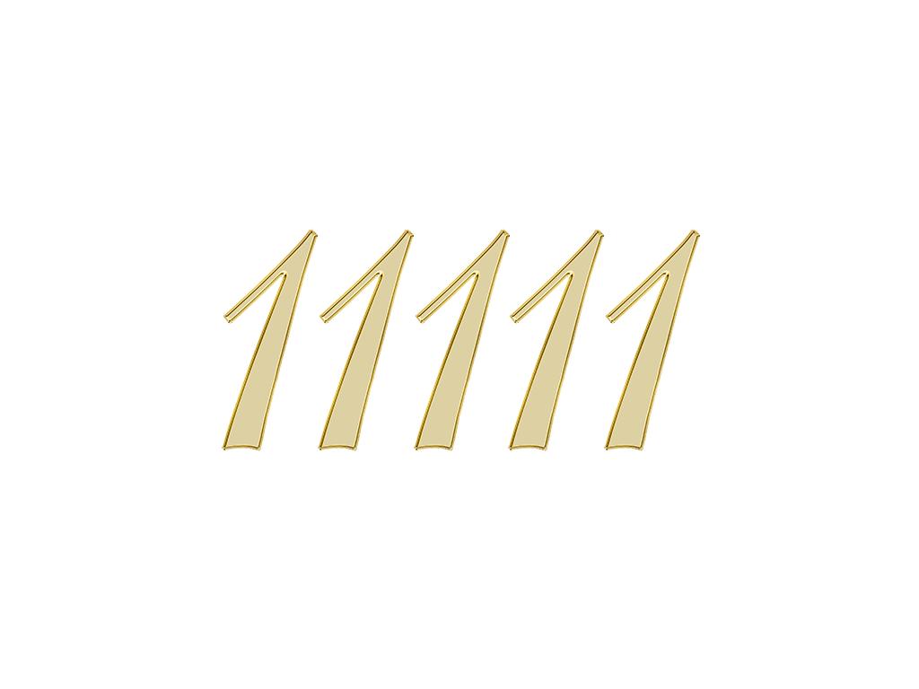 エンジェルナンバー 11111
