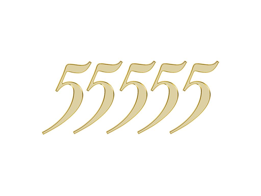 エンジェルナンバー 55555