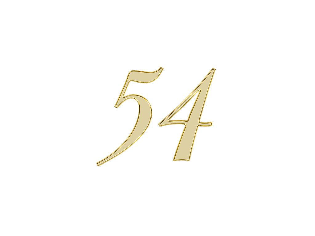 エンジェルナンバー 54
