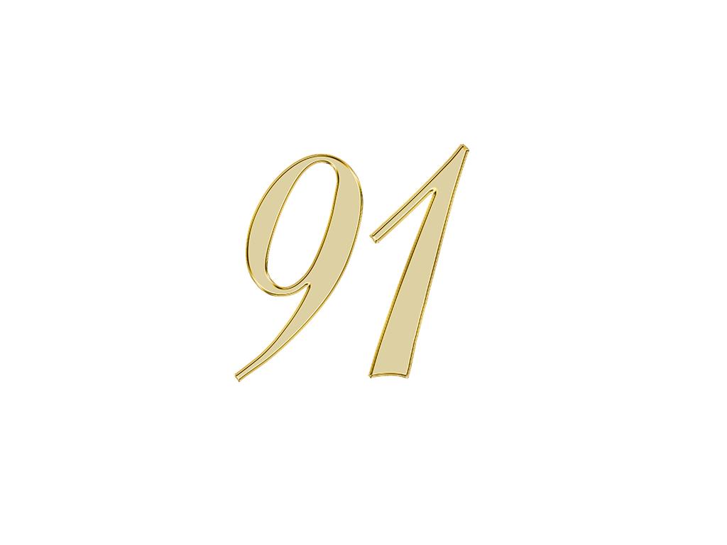 エンジェルナンバー 91