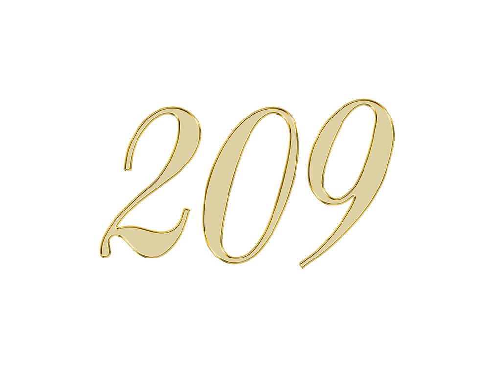 エンジェルナンバー 209