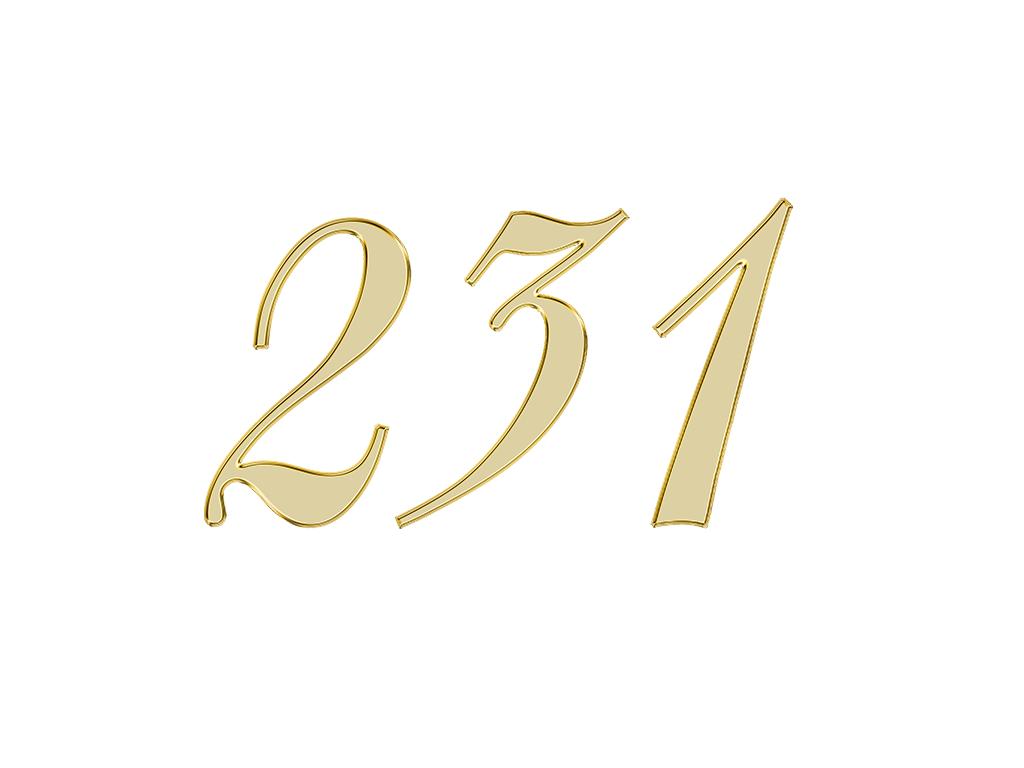 エンジェルナンバー 231