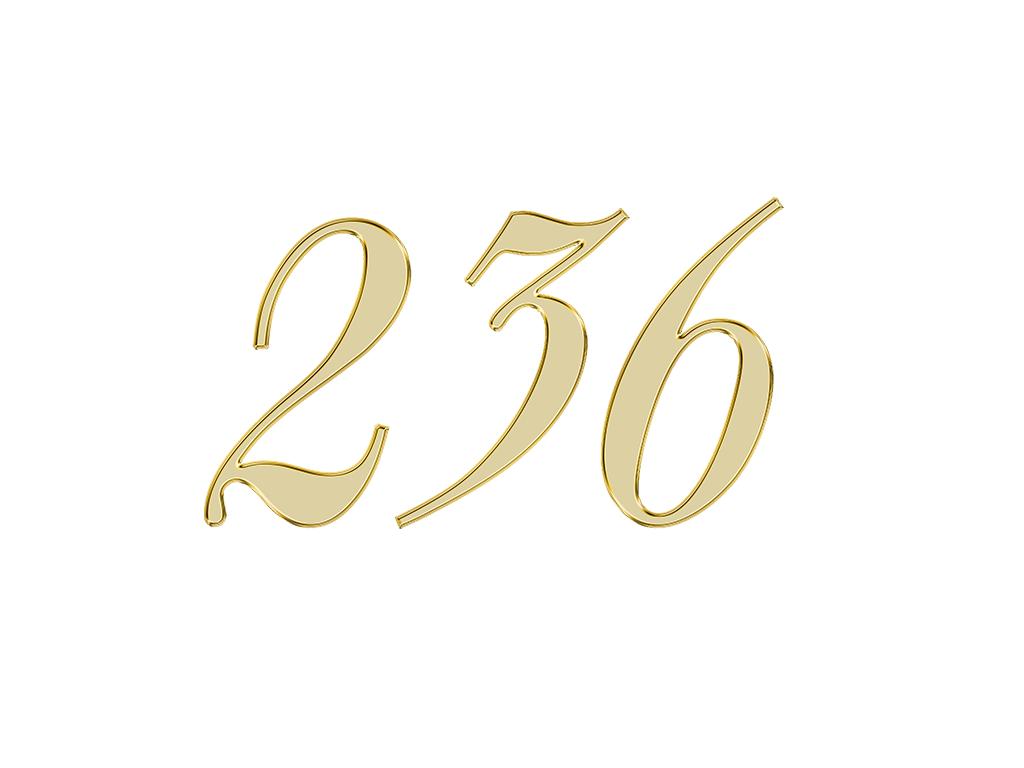 エンジェルナンバー 236