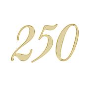 エンジェルナンバー 250